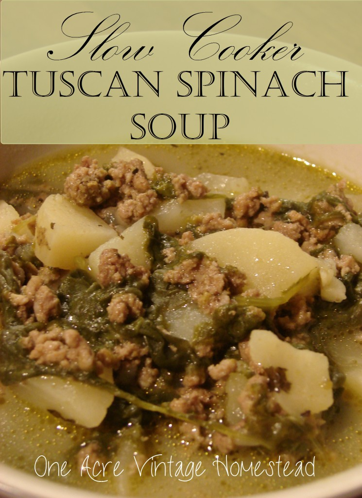 Slow Cooker Tuscan Spinach Soup