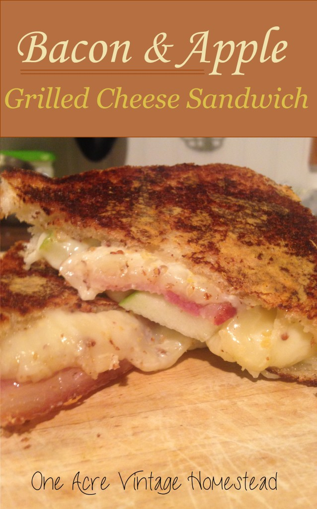 Bacon and Apple Grilled Cheddar Sandwich